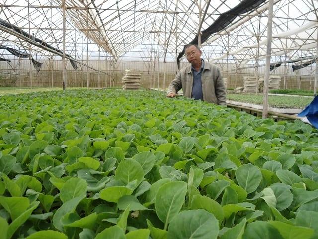 "Từ ""smarthome"" đến ""smartfarm"" – Tại sao không? 4"