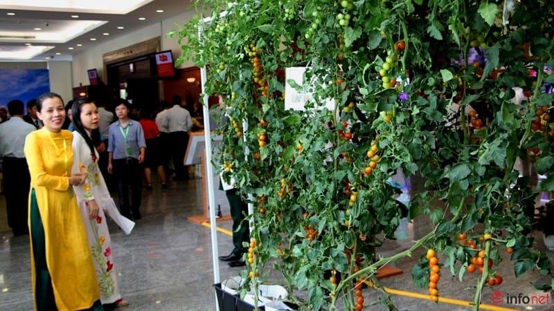 Tổng Bí Thư tham quan triển lãm Công Nghệ Cao tại TP Hồ Chí Minh 15
